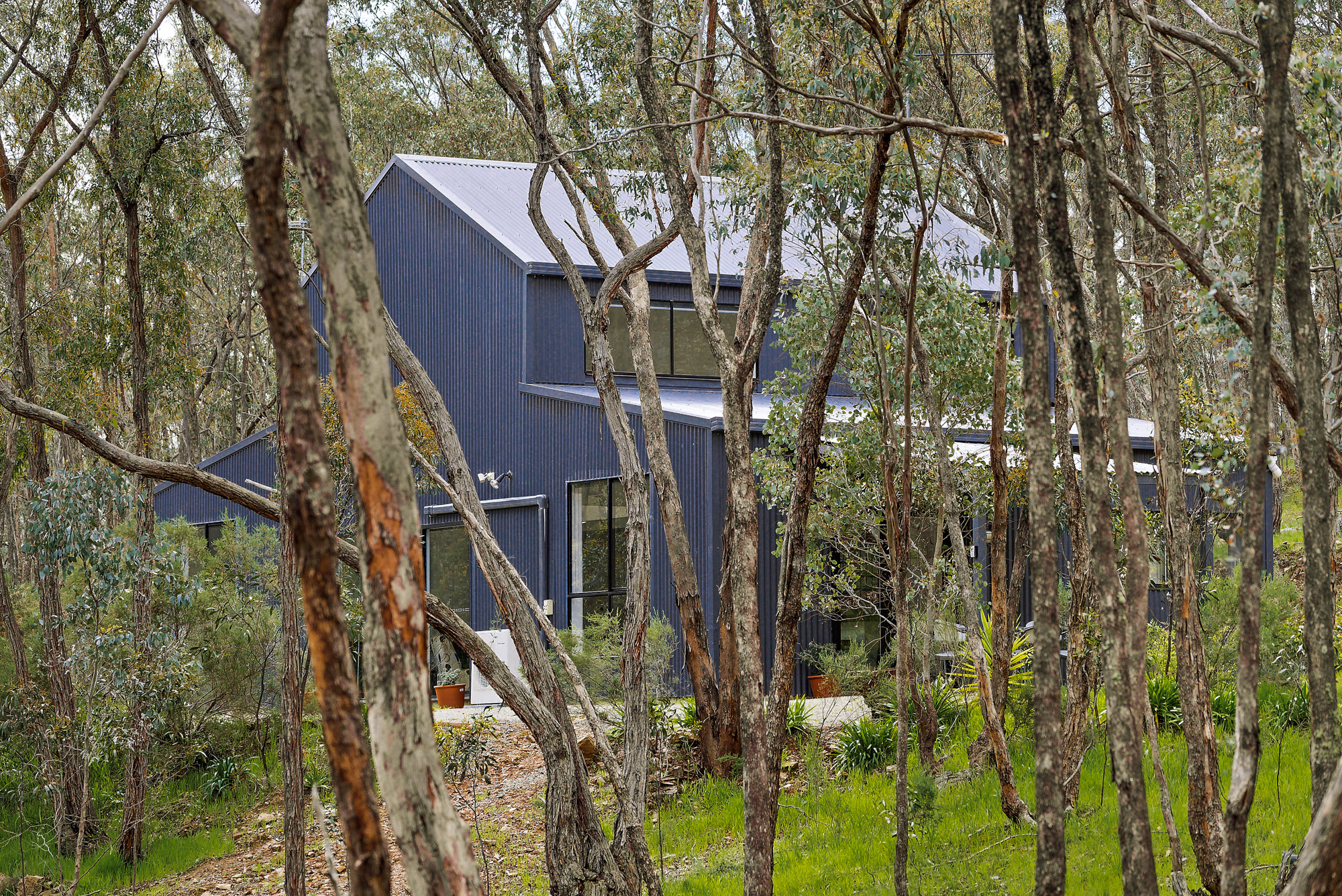 Hideaway in the Trees Castlemaine - ellecor Holiday Homes
